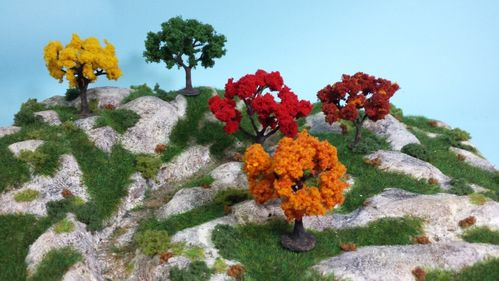 Deciduous plants, various colours from 2,5 to 7 cm (x5)