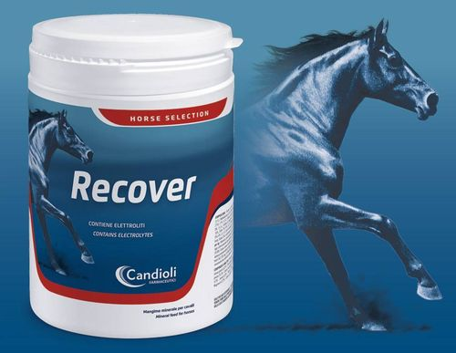 Reecover 3kg