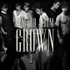 2PM - Vol.3 [Grown] (B Ver.) [+52p Booklet ]