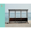 BTS - YOU NEVER WALK ALONE(LEFT VER.)