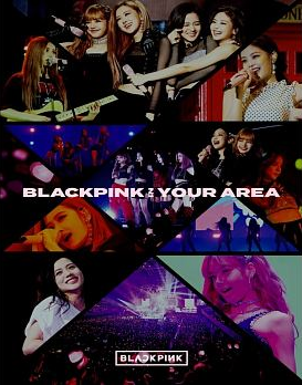 BLACKPINK IN YOUR AREA (PHOTOBOOK Ver.)(First Press Limited Edition)