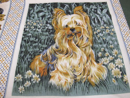 CREATIVE CRAFT COLLECTION - YORKY